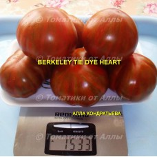 Сердце в стиле Тай-Дай из Беркли (Berkeley tie dye heart)