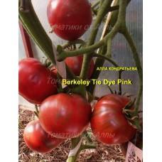 Розовый в стиле Тай-Дай из Беркли (Berkeley Tie Dye Pink)