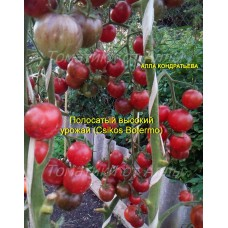 Полосатый обильный урожай (Csikos Botermo)