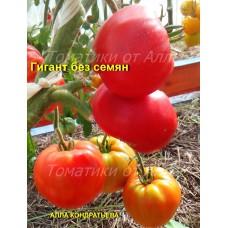 Гигант без семян (Gigante senza semi)