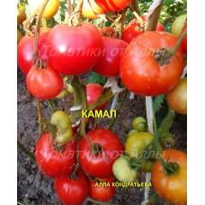 Камал