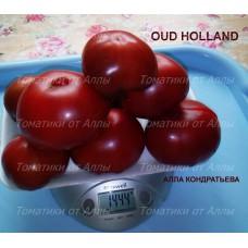 Старая Голландия (Oud Holland)
