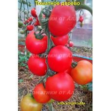 Томатное дерево      (Tomaten Baum)