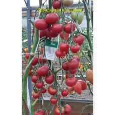 Брендивайн вишневый (Brandywine Cherry)