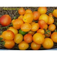 Предгорная груша (Piedmont Pear)