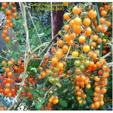 Дикие желтые томаты  (Wildtomate gelb)