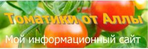 Мой информационный сайт